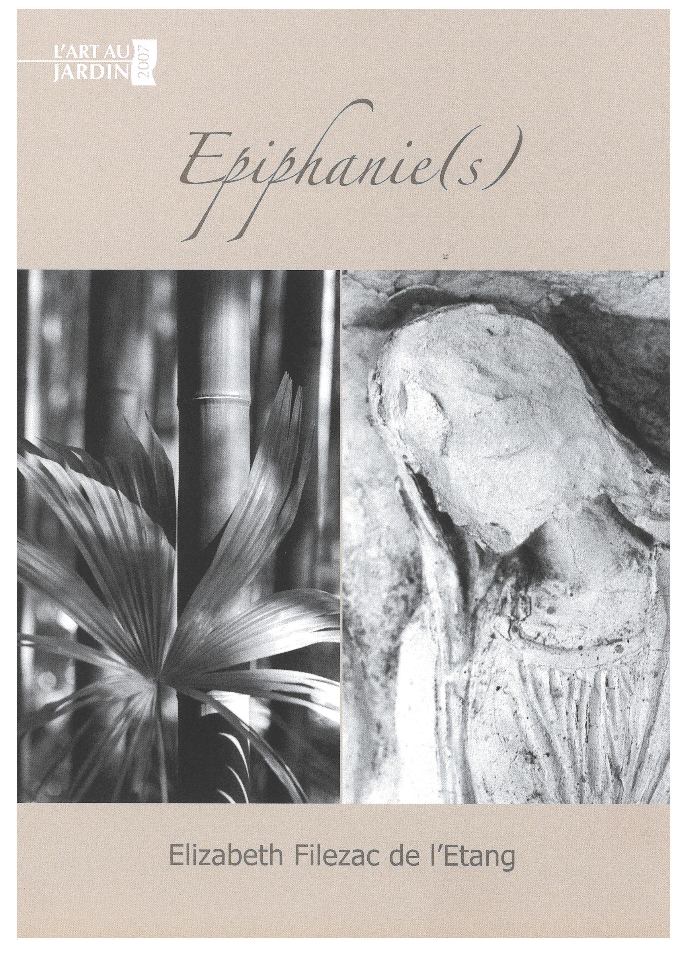 Visuel de l'exposition Epiphanie (s)