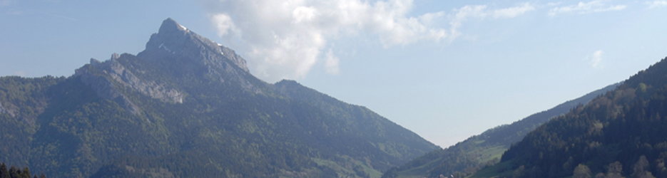 Vue d'ensemble de la Chartreuse